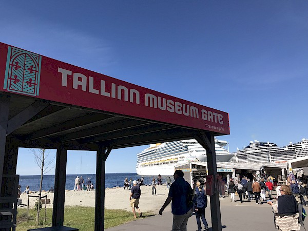 Tallinn museums are welcoming cruise tourists